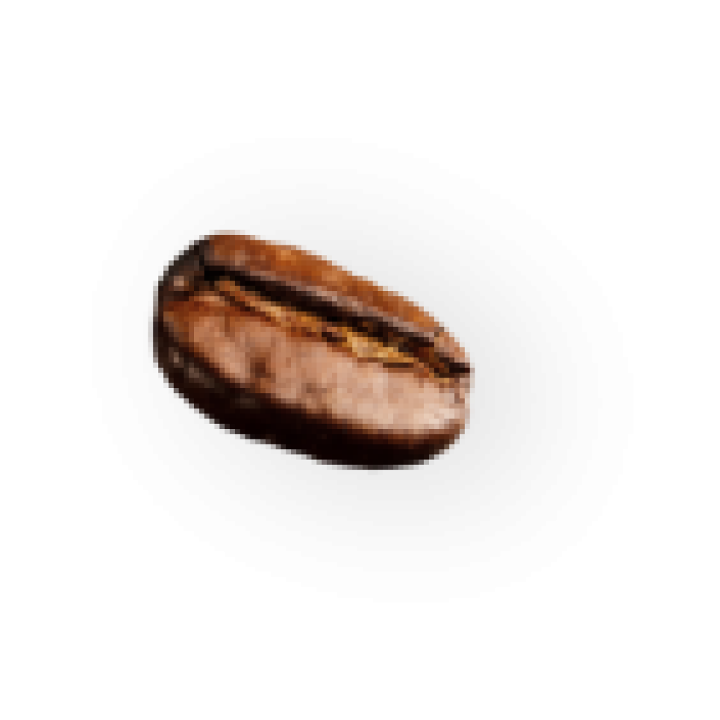 demo-attachment-25-coffee-beans-P4MXYZD7